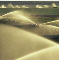 Encomenda Irrigação