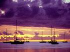 Encomenda Pacote - Papeete & Bora Bora