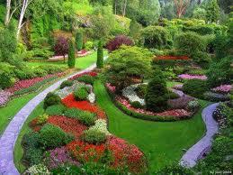 Encomenda Jardinagem