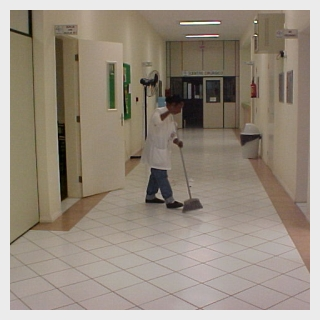 Encomenda Limpesa e conservacao