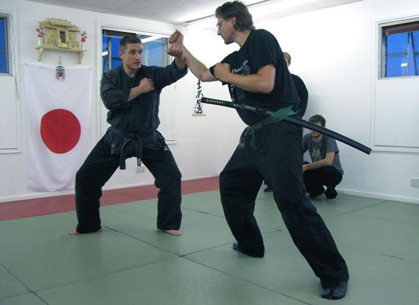 Encomenda Escola de artes marciais especializada em ninjutsu.