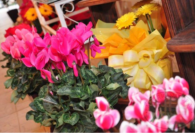 Encomenda Flores e Arranjos .