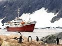 Encomenda Pacote - Antarctic Dream