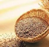 Encomenda Reparação das linhas de preparação de sementes