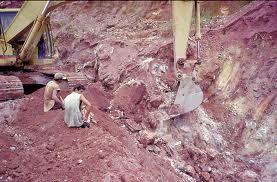 Encomenda Trabalho ambiental no complexo de mineração e metalurgia
