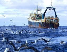 Encomenda Pesca no mar aberto e nas águas territoriais