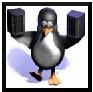 Encomenda Suporte em Linux (Firewall, QOS, VPN, Servidores)