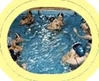 Encomenda Alunos em piscina