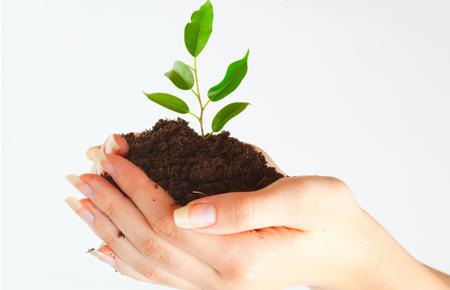 Encomenda Gestão ambiental