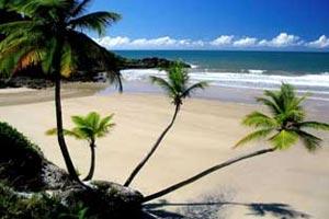 Encomenda Costa Brasileira