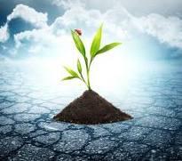 Encomenda O desenvolvimento de documentação ambiental