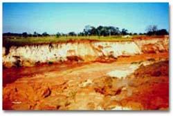 Encomenda Estudo de Controle de Erosão