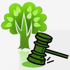 Encomenda Direito Ambiental