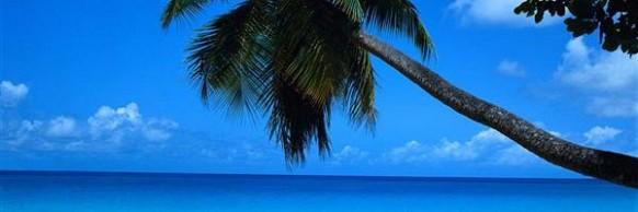Encomenda Pacote - Cancun