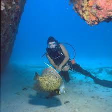 Encomenda Pacote - Aruba