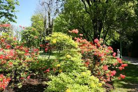 Encomenda Jardins