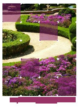 Encomenda Implantacao de jardins
