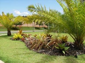 Encomenda Elaboração de projetos de paisagismo e ambientais