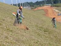 Encomenda Conservação de areas verdes