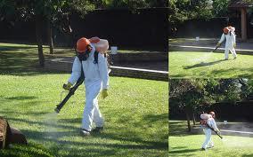 Encomenda Recuperação de gramados