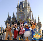 Encomenda Pacote - Disney