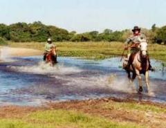 Pacote Pantanal - Mato Grosso do Sul