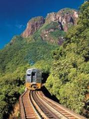 Passeio de trem Curitiba / Morretes