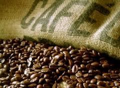 Processamento de Café