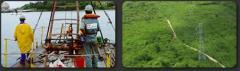 Elaboração de estudos ambientais e execução de planos e programas ambientais.