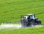 Exportação dos produtos químicos