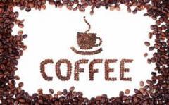 Serviços de café
