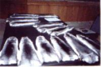 Processamento de peles