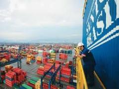 Pagamento de impostos e taxas aduaneiras