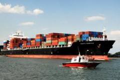 Serviços de organização de exportação
