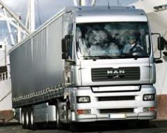 Atendimento a Transporte Rodoviário