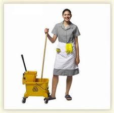 Empregada Domestica, Diarista