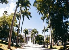Tour de Catamarã  - Ilha de Itamaraca – Litoral Norte
