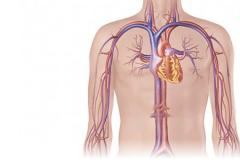 Cardiologia de Interventional