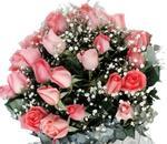 36 rosas cor-de-rosa