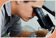 Calibração, Ensaios em Elastômeros