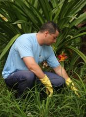 Servicos de jardineiro