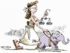 Direito Contencioso