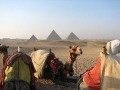 Pacote - Cairo e Sharm el Sheikh