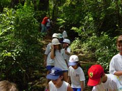 Projeto Escola Natureza