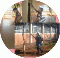 Controle de pragas urbas
