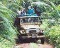 Tour Jeep Safari Pernambuco