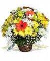 Entrega de Flores em Salvador