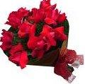 Entregas de Bouquet de Flores com Mensagem