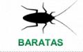 Barata