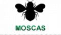 Moscas